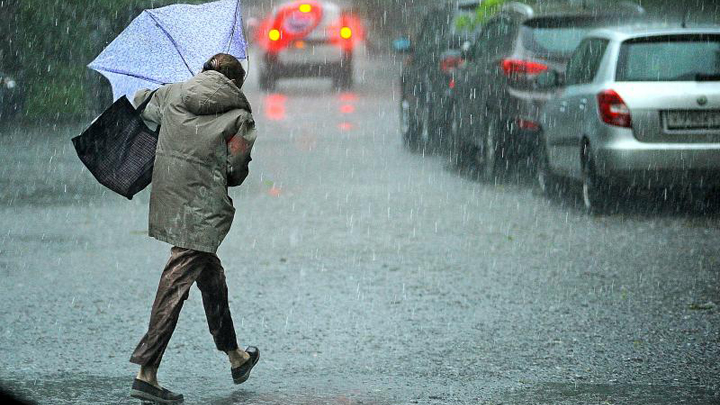 МЧС предупредило о грозах и сильном ветре в Воронежской области