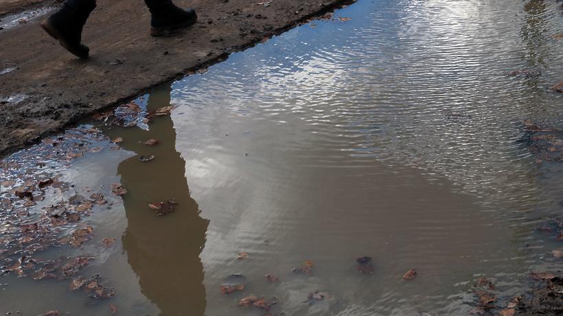 Пенсионер из Воронежской области утонул в луже