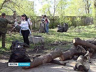 Месячник благоустройства в Воронеже продлится до 15 мая
