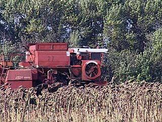 Министр сельского хозяйства России отметил воронежских аграриев