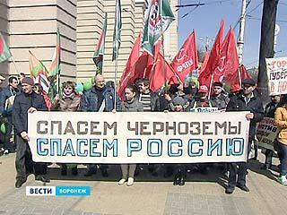 Митинг против добычи никеля в Воронежской области поддержали около 250 человек