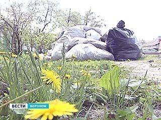 Многие дворы продолжают утопать в мусоре