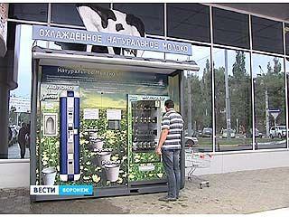 Молочных автоматов в Воронеже станет в 4 раза больше