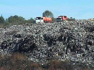 Мусор в Воронежской области будут вторично перерабатывать или уничтожать