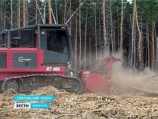 На борьбу с погибшим лесом вышел первый в Воронежской области мульчер