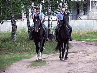На охране дачных поселков - конная милиция