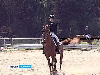 На Открытом Кубке области Воронежский регион представляли несколько передовых конных клубов
