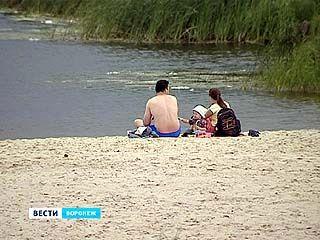 На пляжах в Воронеже и рядом купаться нельзя