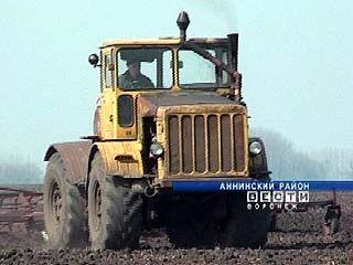 На полях Аннинского района работает старейший трактор России