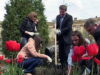 На Привокзальной площади посадили розы