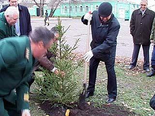 На улицах Воронежа появится 20 тысяч молодых деревьев