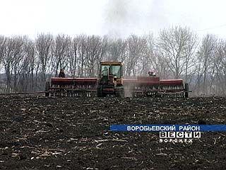 На юге области начались весенне-полевые работы
