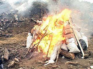 Наркополицейские Воронежа сожгли 350 кг наркотиков