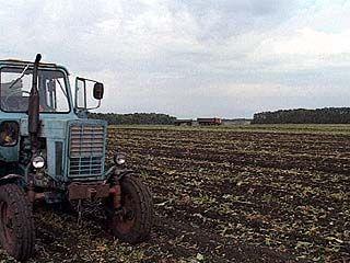Некоторые хозяйства до сих пор не завершили уборку