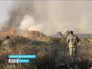 Несколько часов тушили пожар, который вспыхнул вдоль Усманки