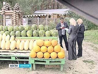 Незаконных торговцев отслеживают при помощи видео и фото камер