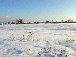 Нынешней зимой погодные условия благоприятны для озимых