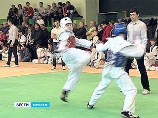 Областные соревнования по тхеквондо по версии ВТФ прошли в Воронеже