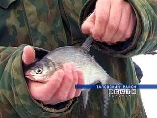 Областные власти дали воронежским рыбакам послабление