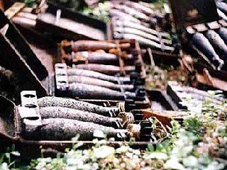 Одна из семей Таловского района хранила в сарае десятки снарядов