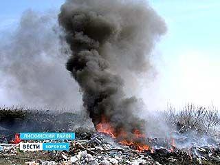 Около села Средний Икорец на площади больше гектара горел мусор