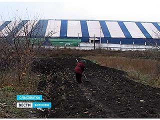 Ольховатские огороды, затопленные патокой, не подлежат возделыванию