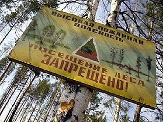 Особый противопожарный режим будет введён в Воронежской области бессрочно