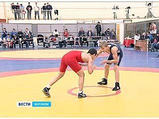 Первенство ЦФО по вольной борьбе среди юношей финишировало в Воронеже