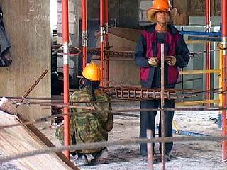 Почти восемь тысяч иностранцев будут работать в Воронежской области