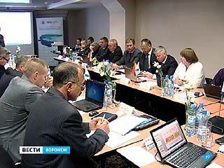 Подготовку электросетевого хозяйства к зиме обсудили в Воронеже