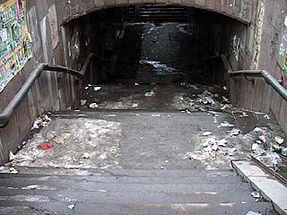 Подземные переходы в Воронеже ждет генеральная уборка