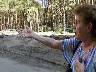 Получит ли лес в районе Антоново-Овсеенко статус особо охраняемой природной территории?
