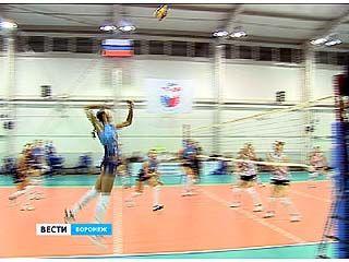 Полуфинальный этап Кубка России по волейболу стартовал в Воронеже