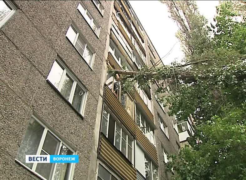 Последствия бури. в воронеже деревья пробивали балконы и пов.