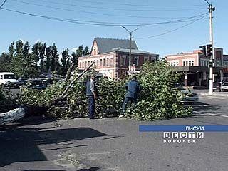 Последствия урагана устраняют в Лисках