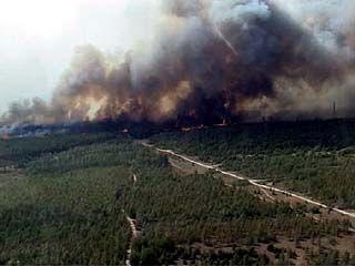 Пожарная ситуация в Воронежской области может выйти из-под контроля