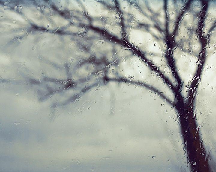 Прогноз погоды на 31.01.16