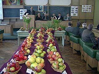 Прошла конференция о перспективах развития садоводства в Черноземье