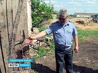 Против руководителя Каширского свиноводческого хозяйства возбуждено дело