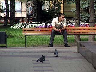 Птицы не улетели из Кольцовского сквера