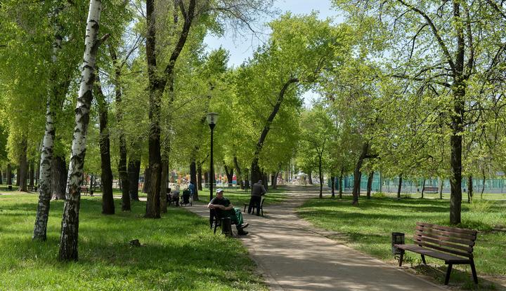 В Воронеже разработали концепцию развития парка «Южный»