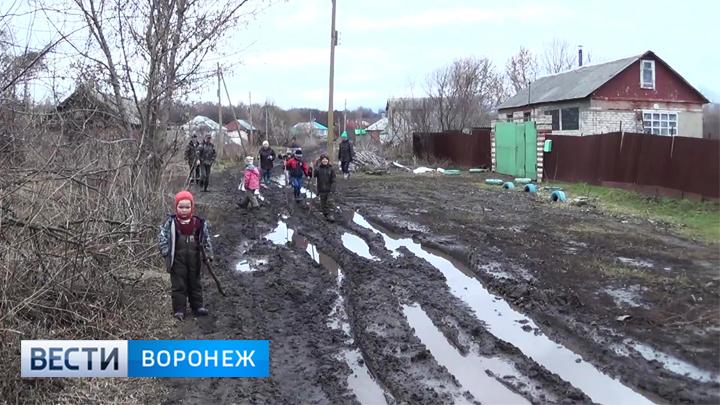 В воронежском селе из-за ужасной дороги дети с трудом добираются до школы