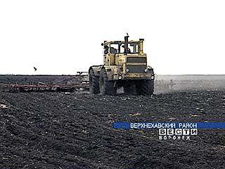 Растениеводы Воронежской области преодолели важный рубеж