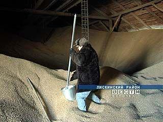 Россельхознадзор проверяет, как хранится зерно в Воронежской области