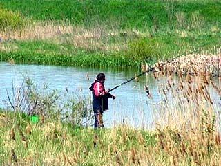 Рыбак потерял в Каширском районе два миллиона рублей
