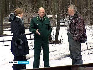 Рыбацкие домики возле посёлка Масловка полностью должны снести до 27 мая