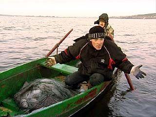 Рыбоохрана расставила сети на браконьеров
