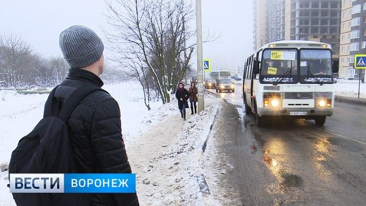 Общественники раскритиковали темпы обновления воронежских автобусов