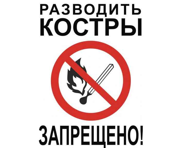 С 30 апреля в Воронежской области противопожарный режим