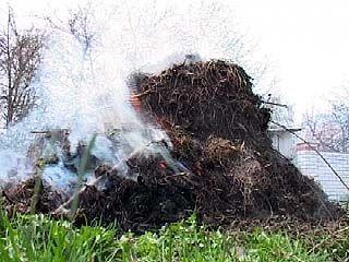 С приходом весны Воронеж погрузился в дымовую завесу